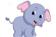 L'elefante con la proboscide corta