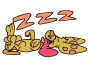 Pisolone il cane dormiglione